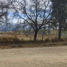 Fracciones Sobre Camino Los Nogales, El Bolson