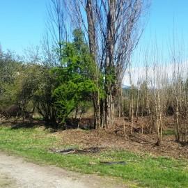Lote en Villa del Lago, Lago Puelo